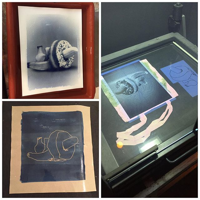Printing some banana cyanotypes for @hantmagazin with @axdrgrn #cyanotype #hant07 #hantmagazin